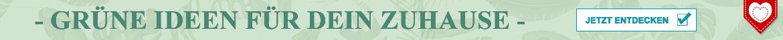 Grüne Ideen auf Amanosa